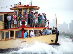 Join our Boxing Day Spectator Cruise aboard Proclaim, a vintage ferry built in 1939