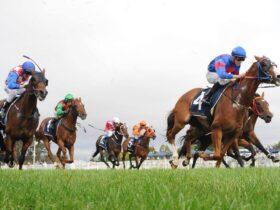 Christmas Cup Horse Race Goulburn