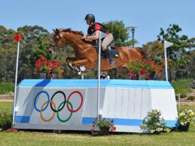 Rider making a jump during an event