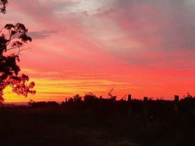 Sunset Wine Winter Fire