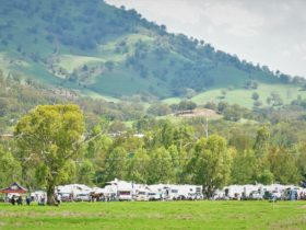 Murrurundi the home of King of the Ranges a beautiful spot at the foot of the Liverpool Range