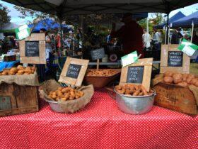 Lawson Park Markets