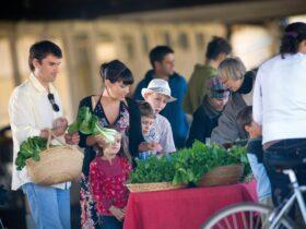 Lismore Farmers Market