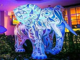 Glow elephant - just one of the things you might see
