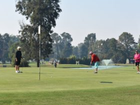 NSWVGA Veterans Week of Golf - Golfer putting with fountain and lake in background