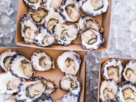 Oysters in the Vines - Our local Sydney Rock Oysters