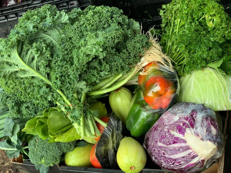 Locally grown, farm fresh vegetables! Doesn't get better than this.