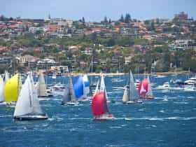 Yachts sailing in the Sydney to Hobart yacht race on Sydney Harbour