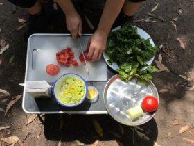 Hands chopping tomatoes on a chopping board with onions and greens adjacent