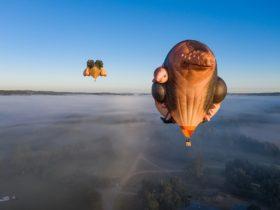 Patricia Piccinini's Skywhale and Skywhalepapa