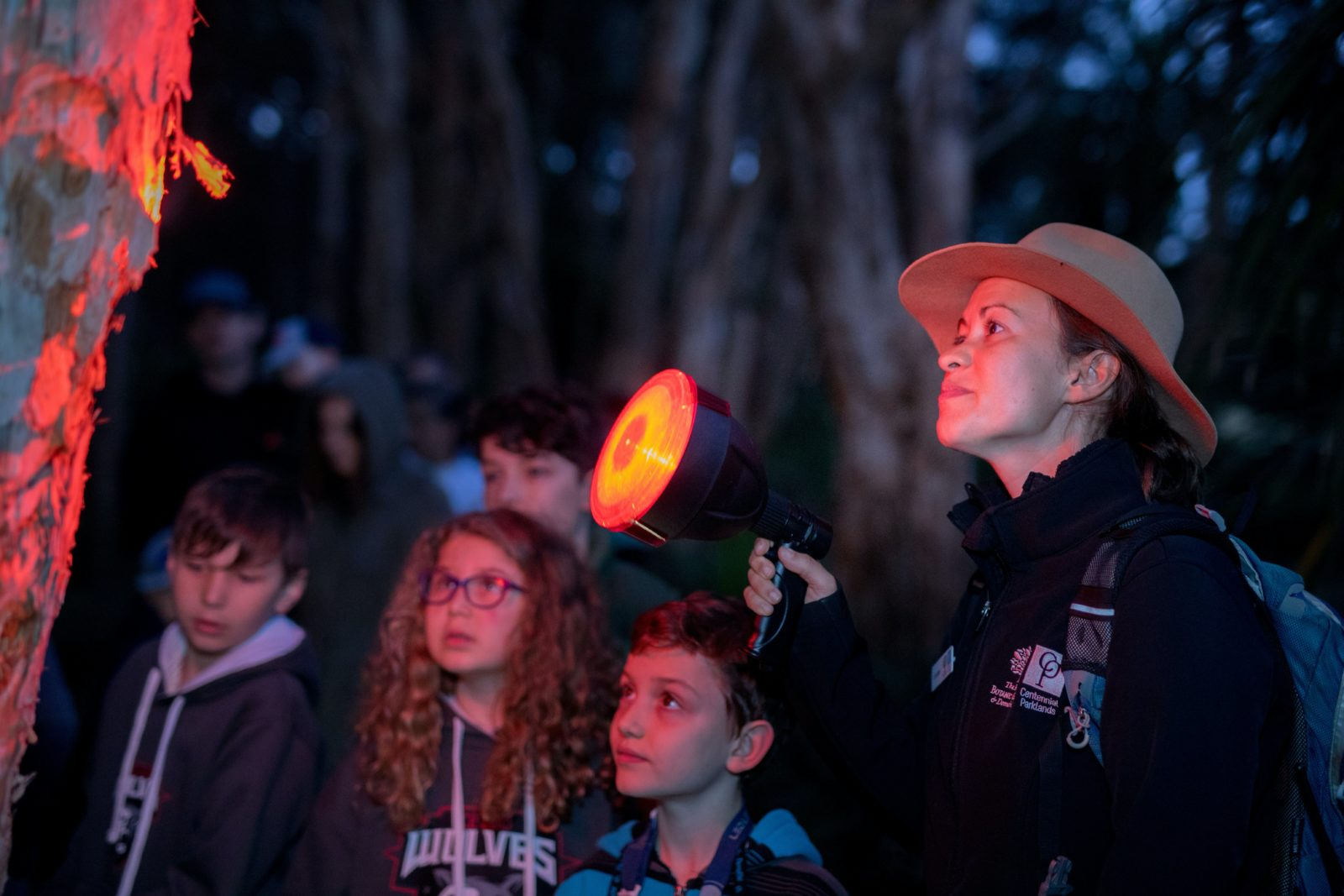 A ranger shines her torch into a tree showing young kids