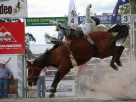Stroud Rodeo and Campdraft