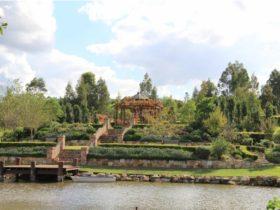 Bath House Garden
