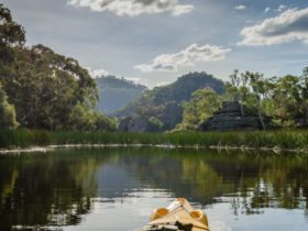 Southern Cross Kayaking