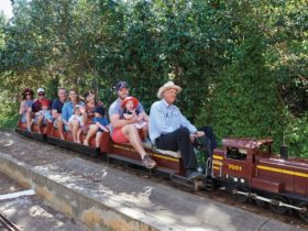 Willans Hill Miniature Railway Twilight Run in Wagga Wagga