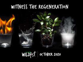 Witness the Regeneration