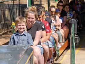 Willans Hill Miniature Railway Rides
