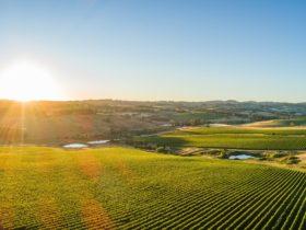 Orange NSW landscape