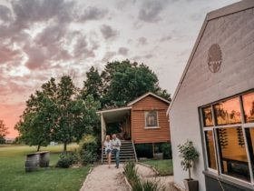 The winery as sunset