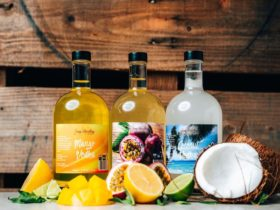 Our Fruit Infused Vodka