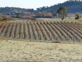Patina Wines