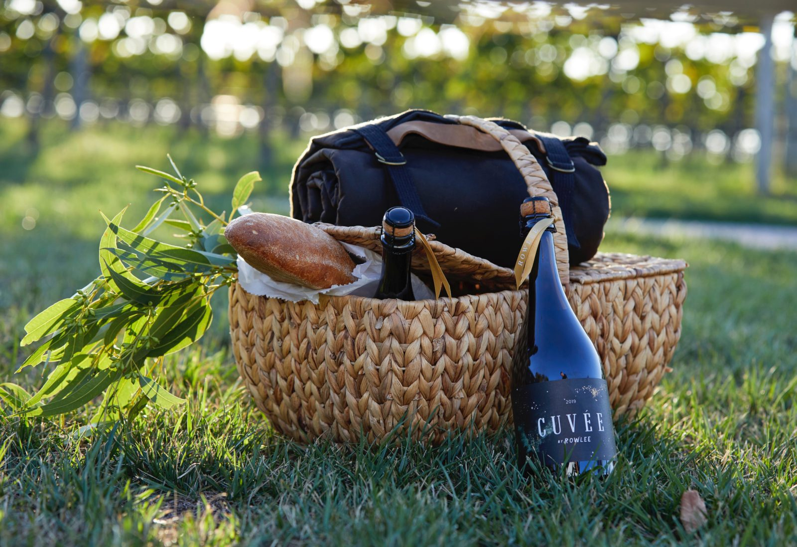 Picnic Basket ready to go with bread and wine sitting on the grass by the vineyard