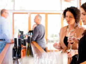 Tasting wine at cellar door