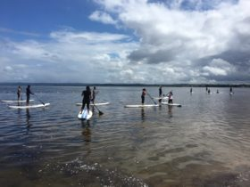 Paddleboard Water