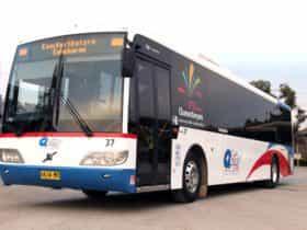 Qcity Transit