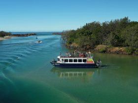 Byron Bay Eco Cruises and Kayaks