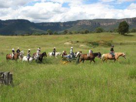 Horse riding, Centennial Glen Stables