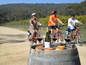 Southern Highlands E Bike Tour