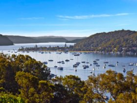 Pittwater Boat Hire Cruises