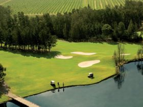 Golf and Tours Magenta, Hunter Valley & Newcastle Ladies Golf Escape