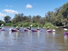 In Motion Fitness Kayak Tours