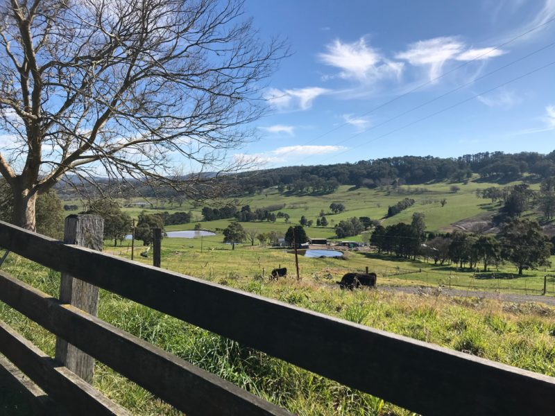 Scenic Drives in the Southern Highlands