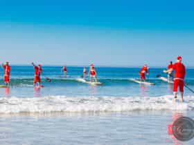 Stand up paddle party