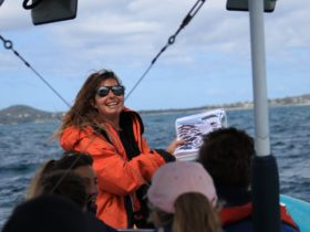 whale watching boat tour guide doing a presentation