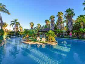Desert Palms pool