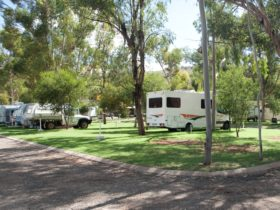Motor homes, large sites, grassed sites, shade, clean and tidy