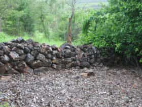 Dry stone wall remnants at Beatrice Hill Well.