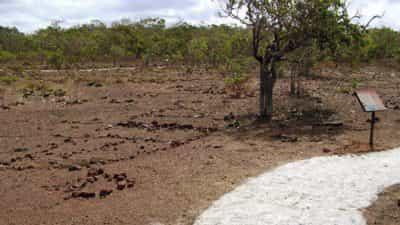 Wurrwurrwuy (Garanhan) Macassan Beach Interpretive Walk - Northern Territory