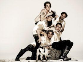 Animal Farm shake & stir theatre co