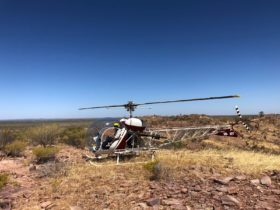 Our Bell 47 Helicopters at our remote heli pad