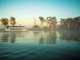 Cruising Yellow Water Billabong