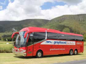 Greyhound Australia coach in country side with windmill