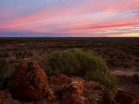 This photo shows a gorgeous outback sunset