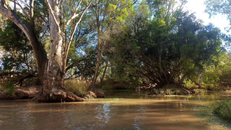 This is a photo of the Bulloo River