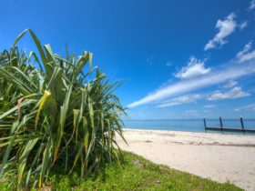 Bongaree Jetty Bribie Island