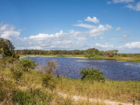 A picture of the lagoon that is located in the Buckley's Hole Conservation Park, Bribie Island.